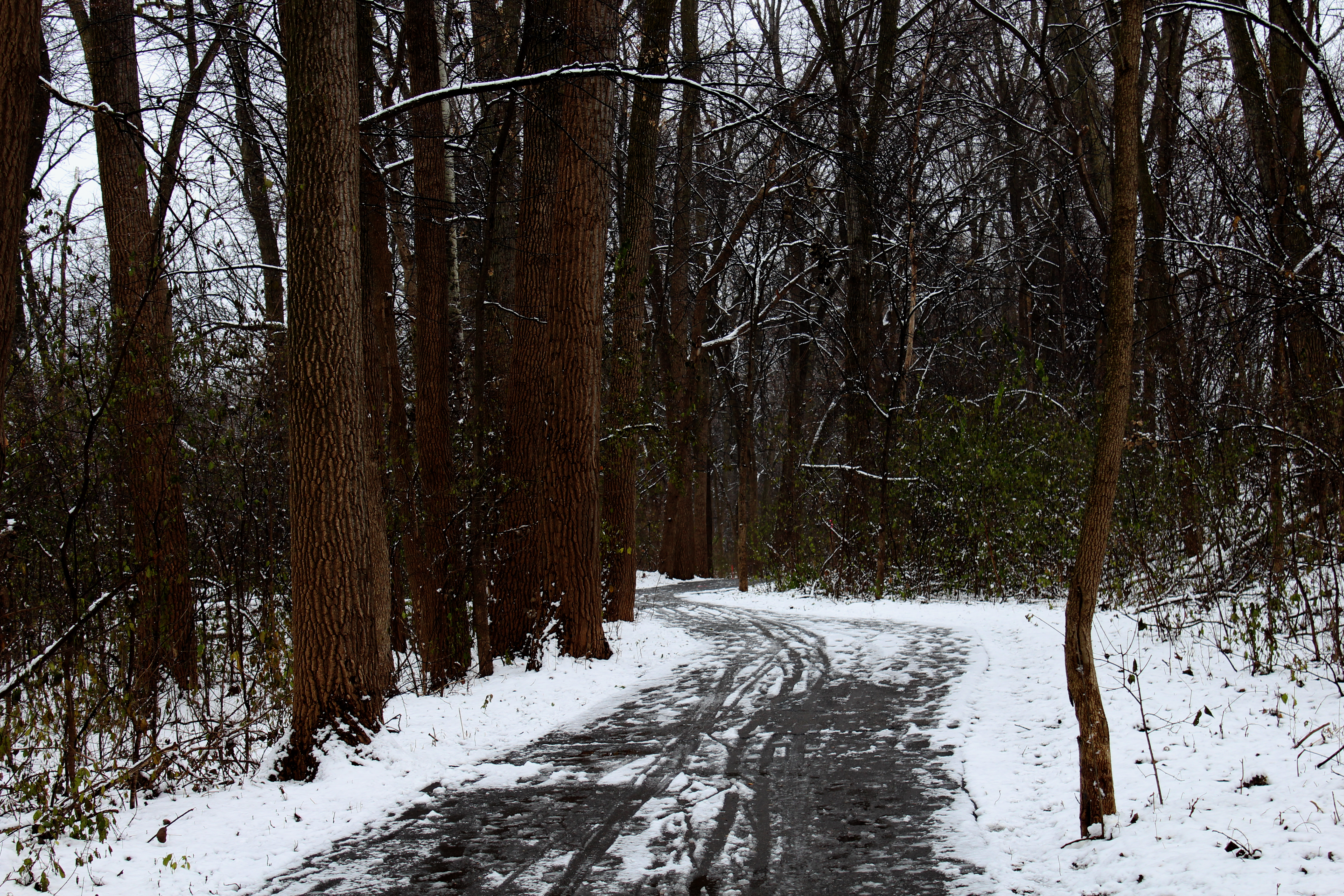 polzine_winter_landscape1