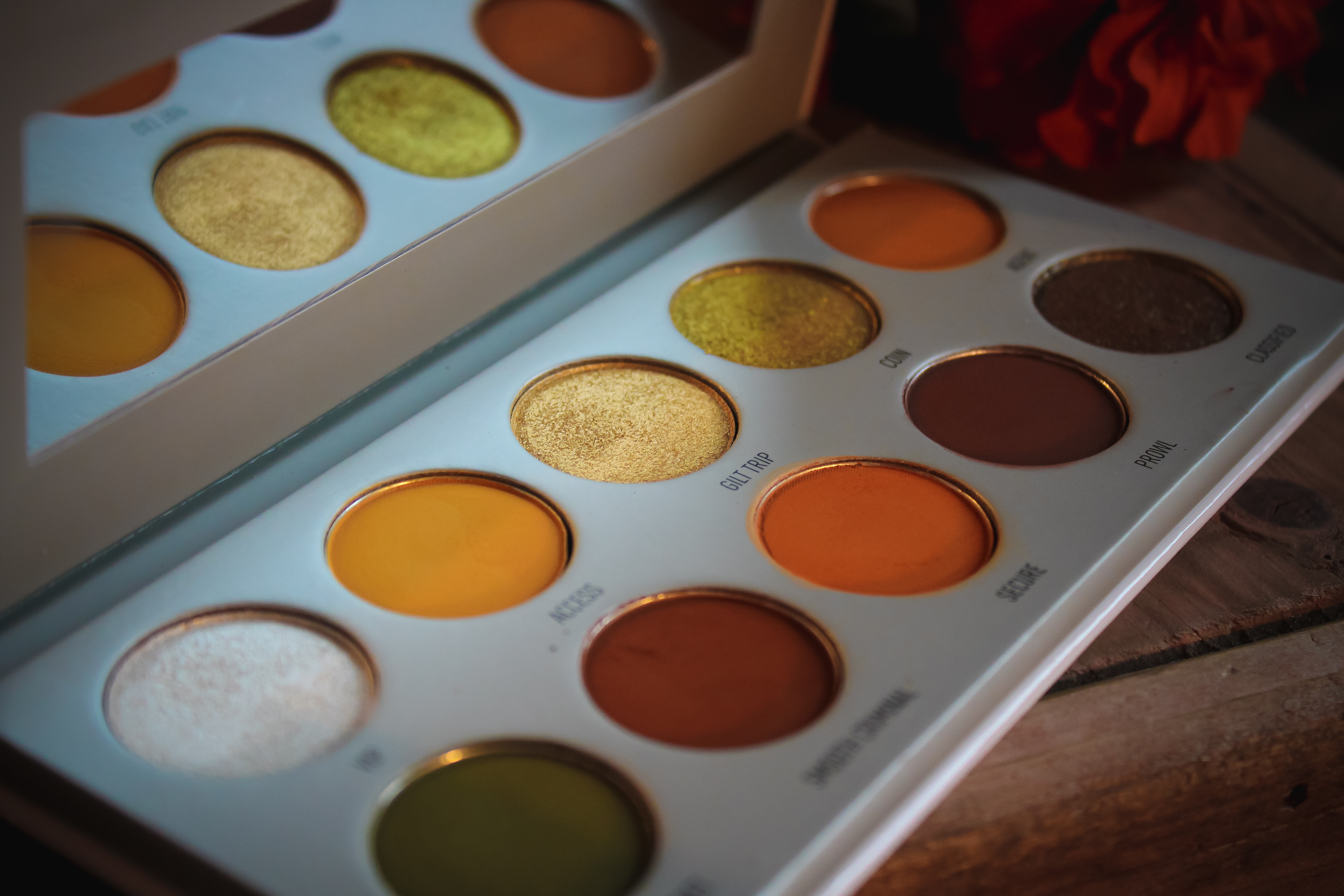 Morphe x Jaclyn Hill Armed and Gorgeous Palette