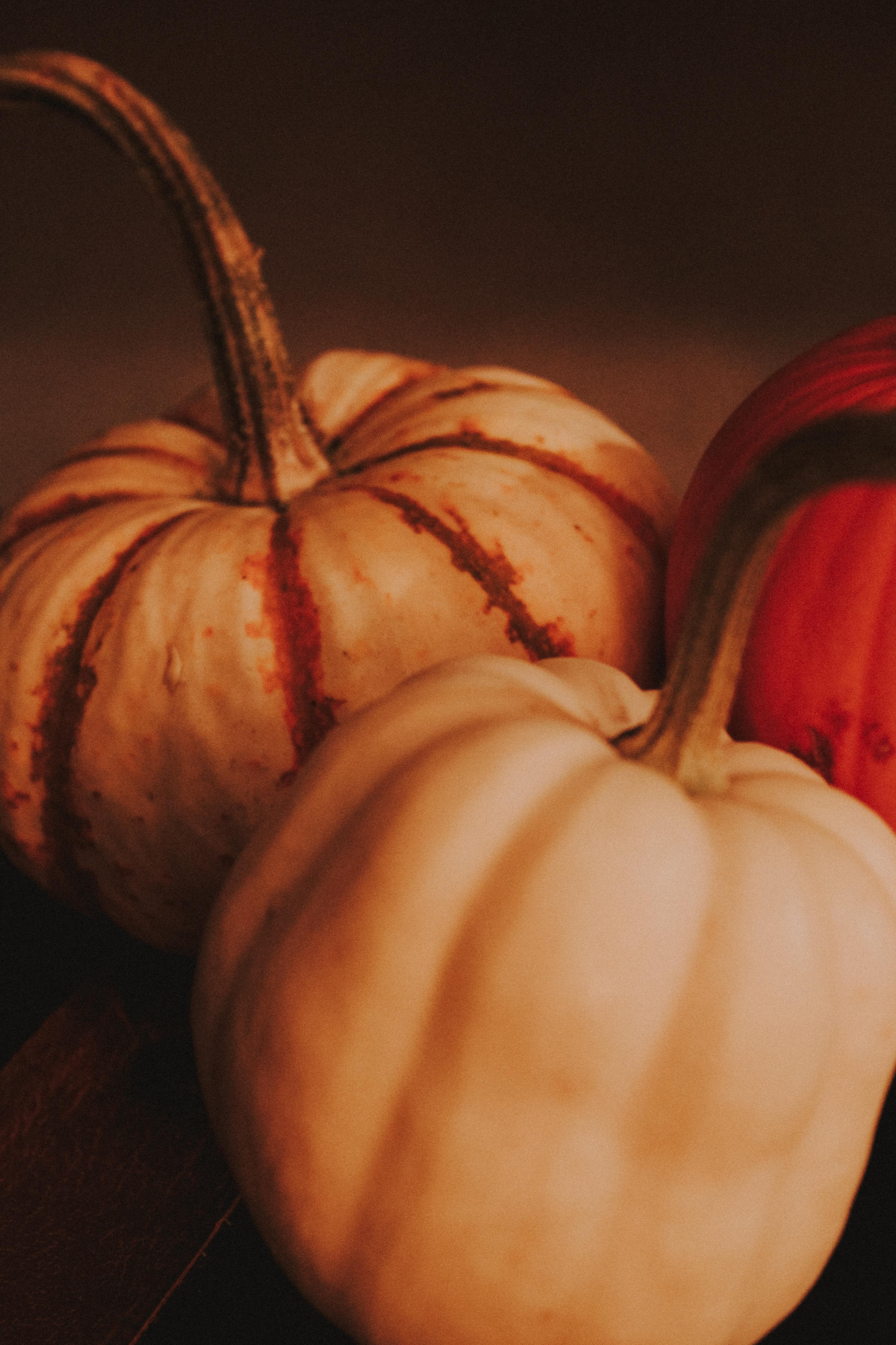 Fall Pumpkin Mae Polzine 2