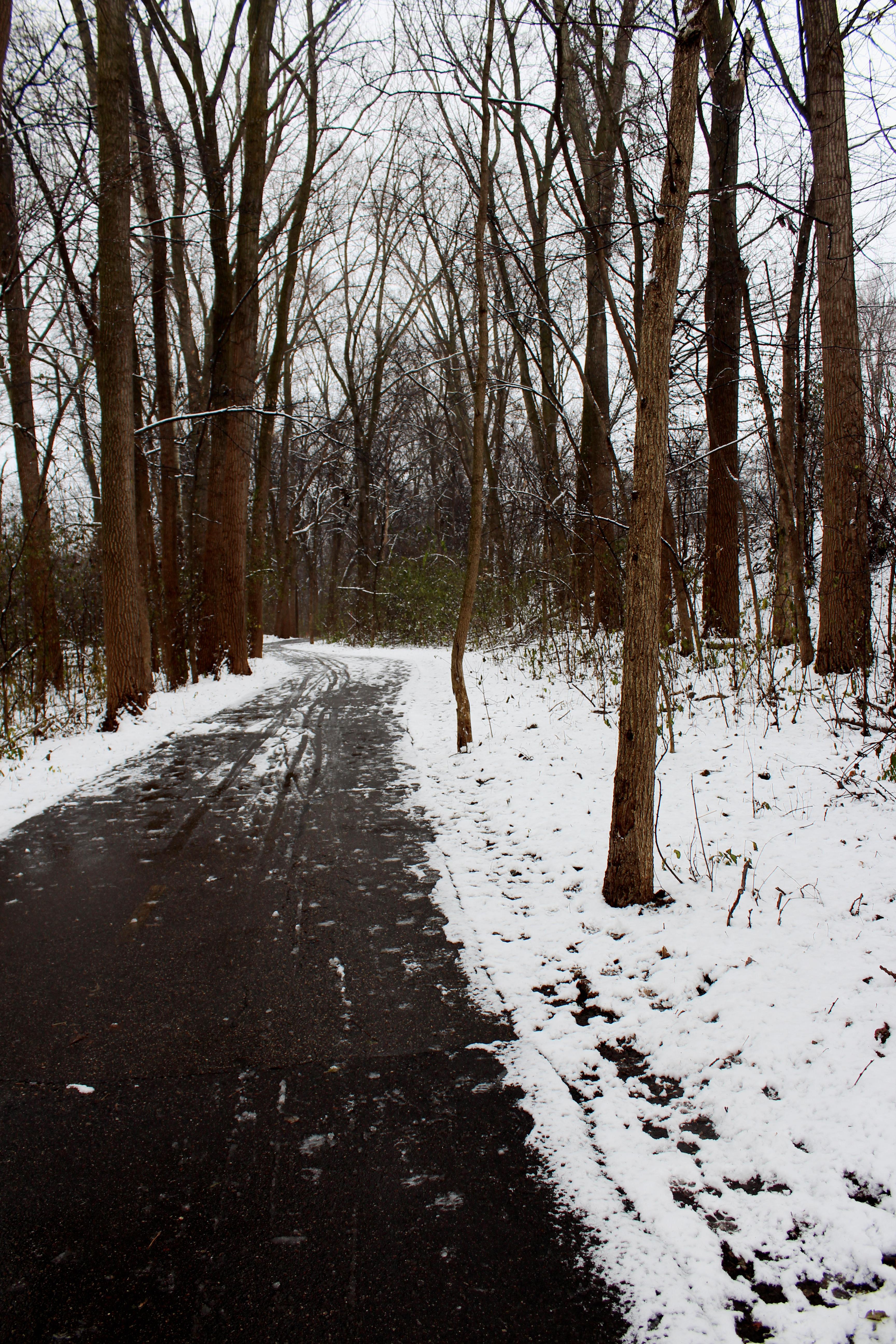 polzine_winter_portrait3