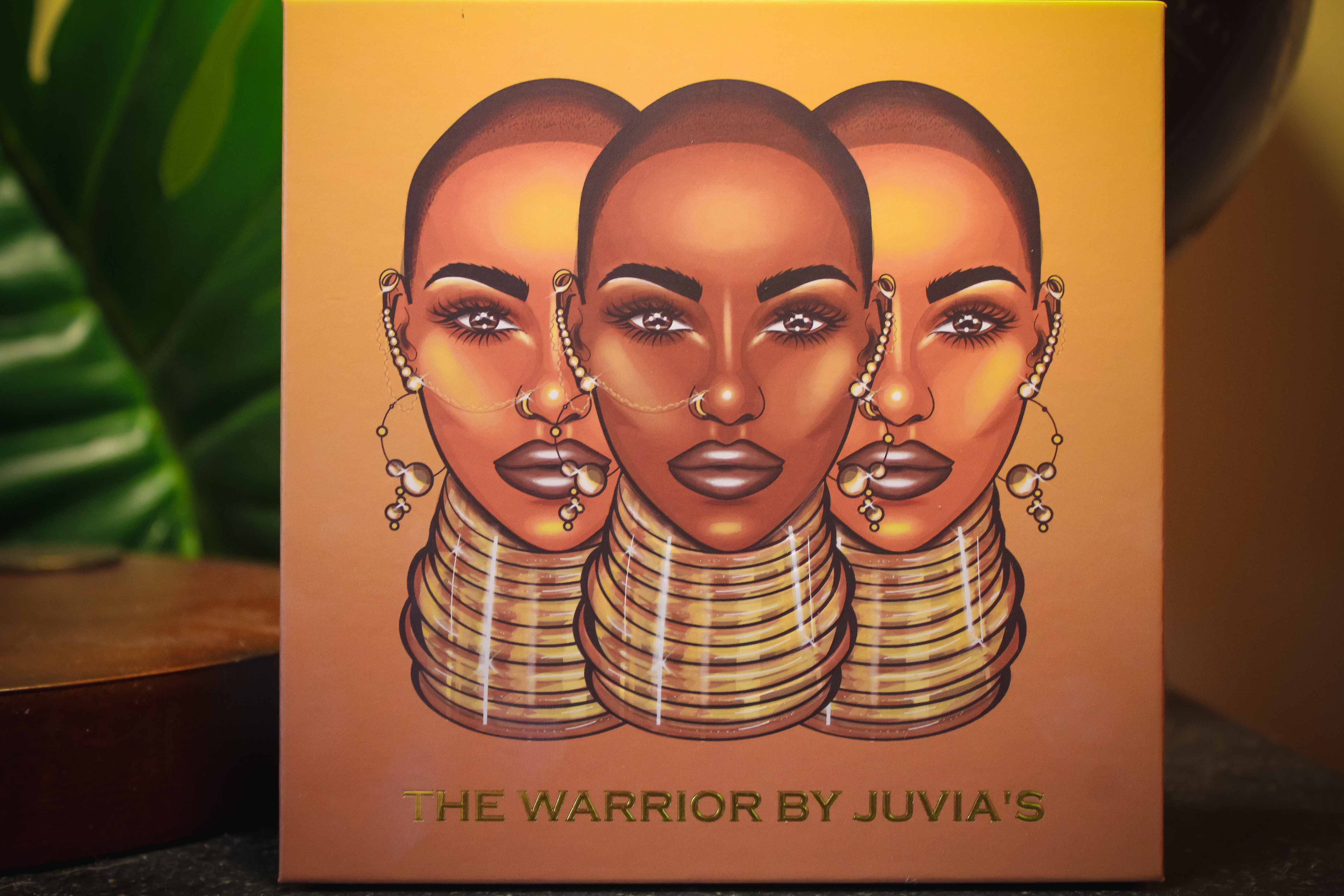 Juvia Place The Warrior Palette 2
