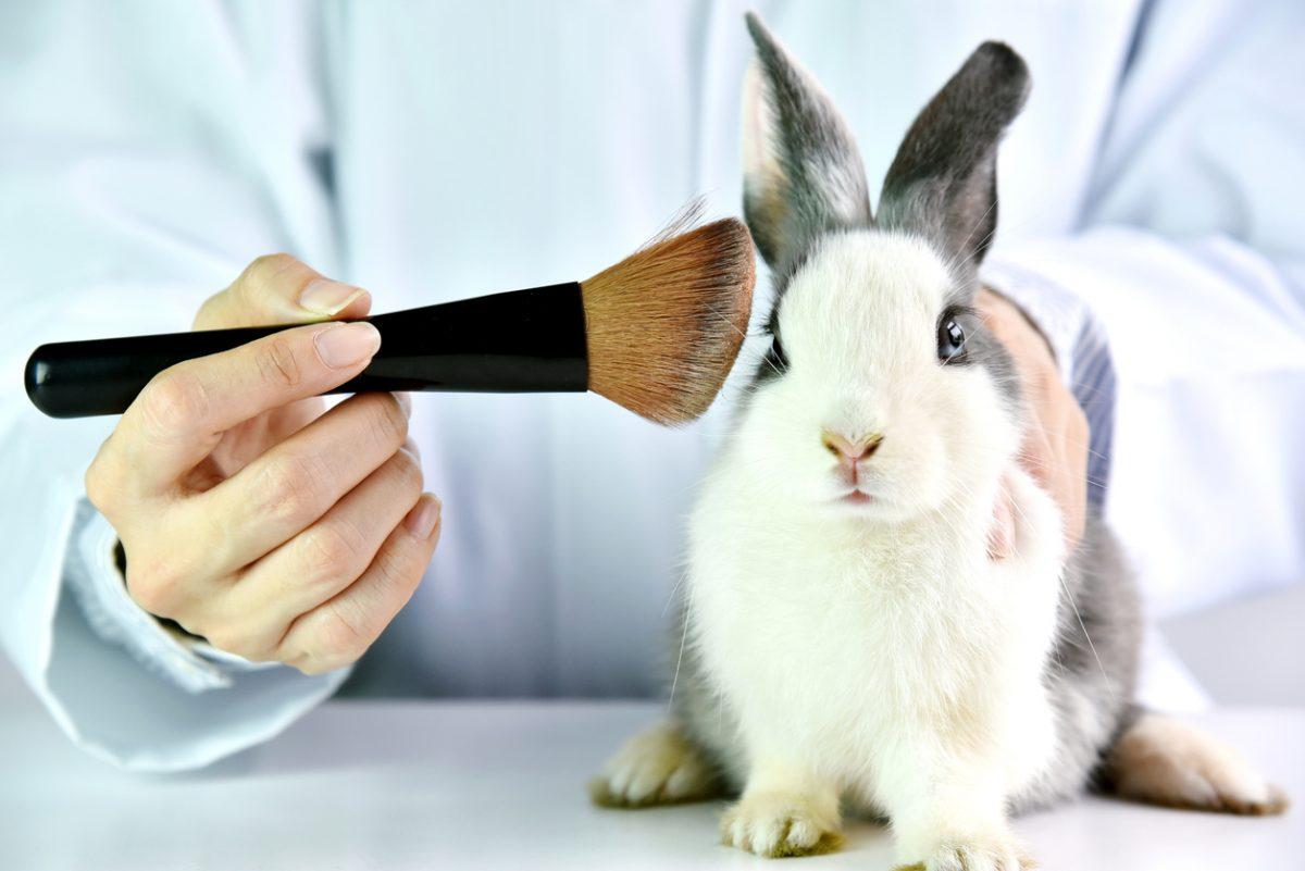animal-testing-ai-research-artificial-intelligence.jpg